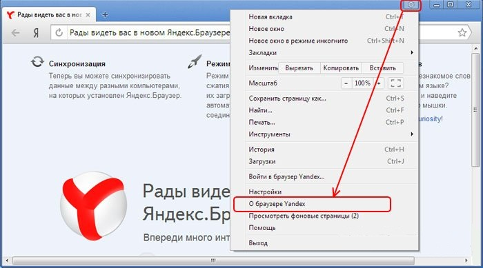 flash-player-in-yandex-browser